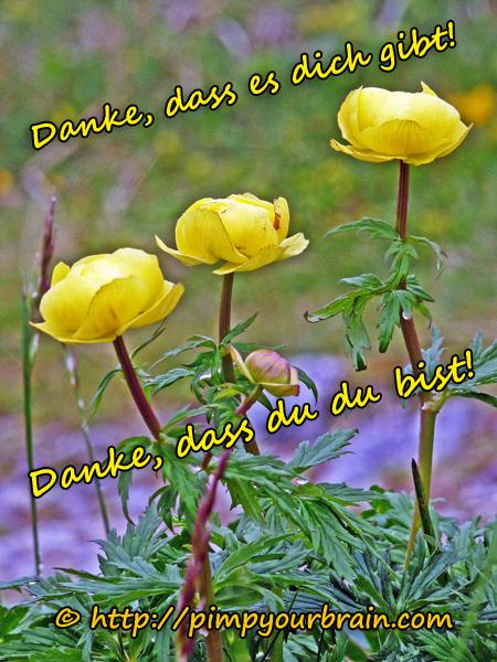 Danke dass du du bist gelbe Blume_600 Dankbarkeit