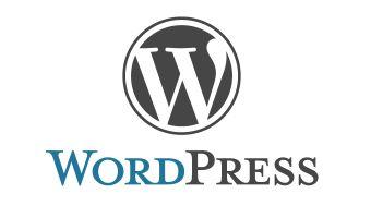 Deine Internetseite, dein Blog mit WordPress – Interview mit Michaela Steidl Folge 22 DBT