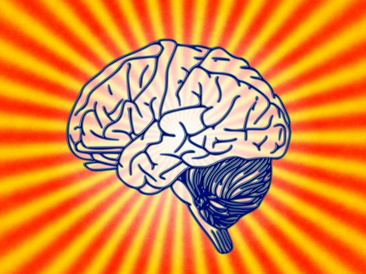 Schreiben fürs Gehirn – Petra Lehner – Folge 182